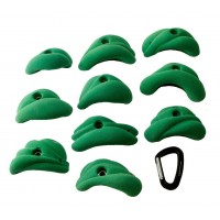 MT Hold PU - Morphology M 10pc (colour)