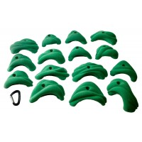 MT Hold PU - Morphology L 15pc (colour)