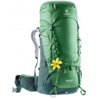 Deuter Aircontact 60+10SL, ,Leaf-Forest, .